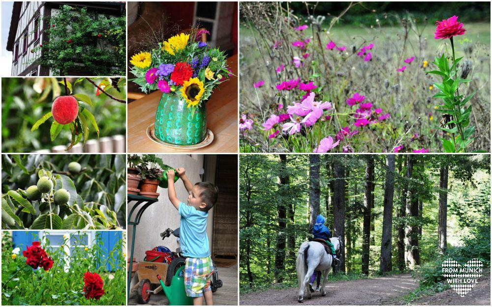 Urlaub mit Kindern im Schwarzwald