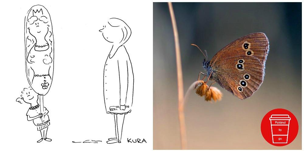 Miriola Dzik Zeichnungen und Fotografie