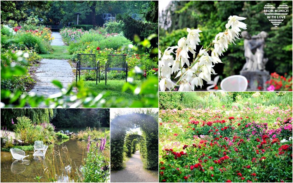 Rosen riechen Rosengarten München