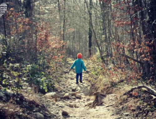 Frühling erwachen: Unsere Familienwanderung auf die Doaglalm