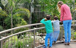 Palmengarten Frankfurt Familienausflug - Partnerlook