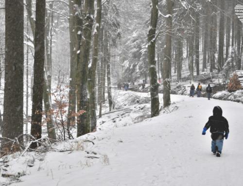 Winterwanderung zum Fuchstanz im Taunus
