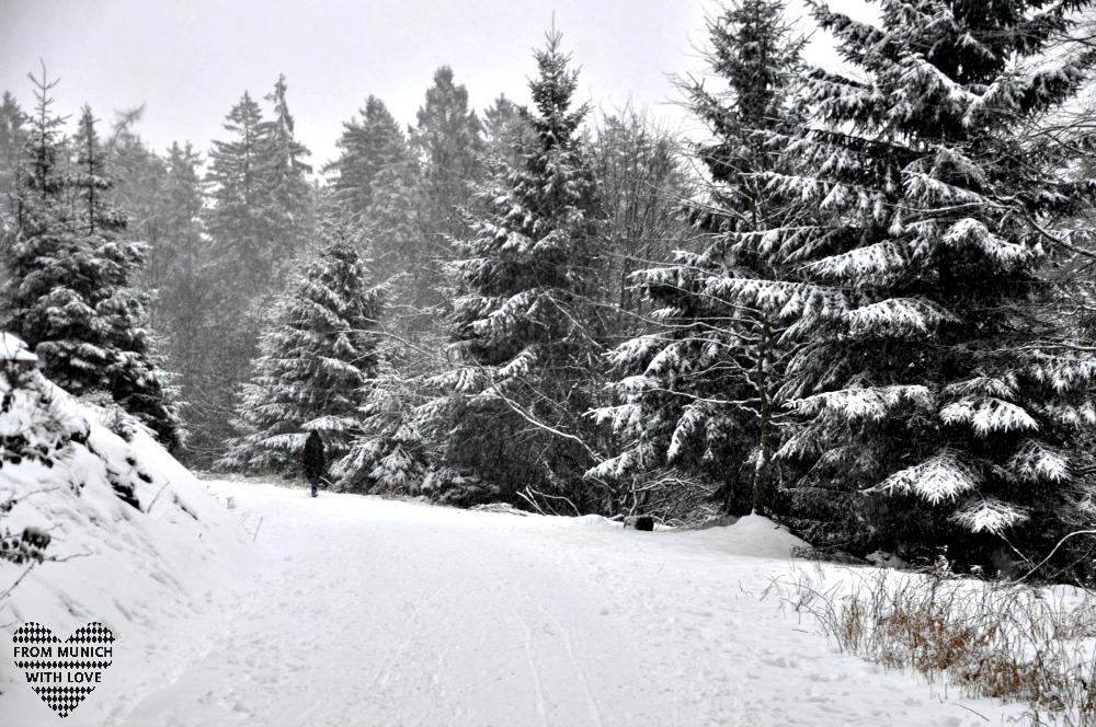 Winterwanderung zum Fuchstanz im Taunus_